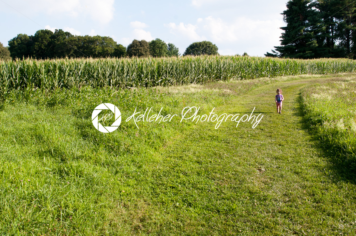Little girl walking in green open space with mature trees on a sunny day with light clouds at Stroud Preserve - Kelleher Photography Store