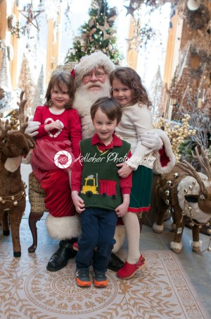 3 Siblings, 2 girls and 1 boy sitting on Santa with decorated tree in background - Kelleher Photography Store
