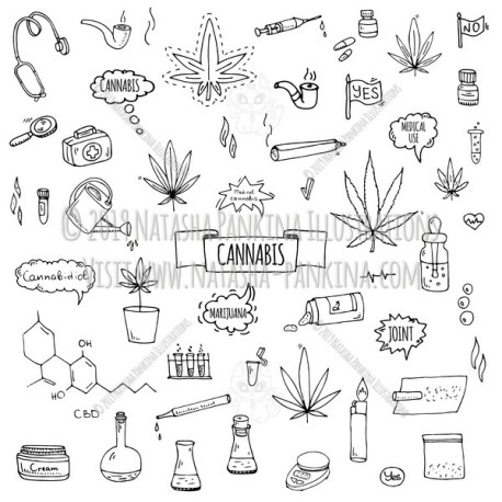 Cannabis. Hand Drawn Doodle CBD Oil Icons Set - Natasha Pankina Illustrations