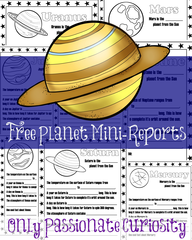 Planet Mini Reports