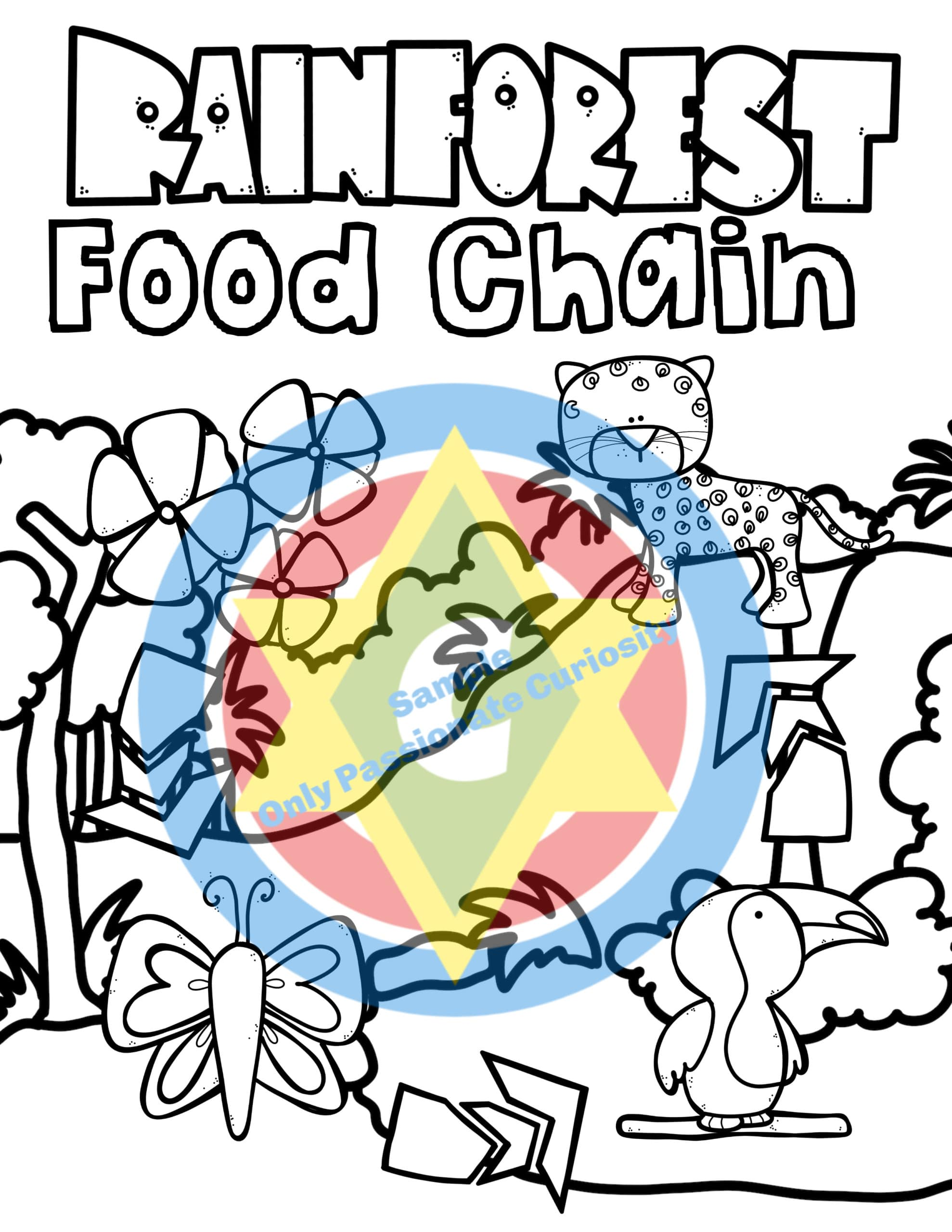 Rainforest Food Chain Coloring Book