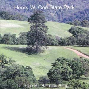 Trees of Henry Coe Stae Park