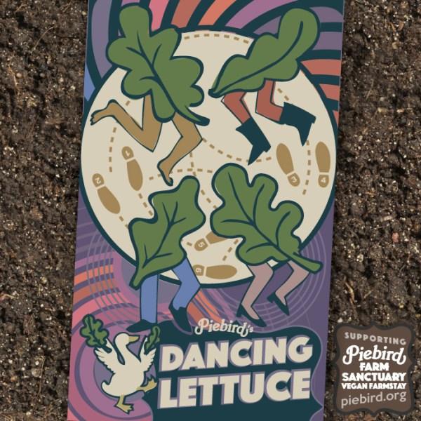 Dancing Lettuce - Heirloom Seeds