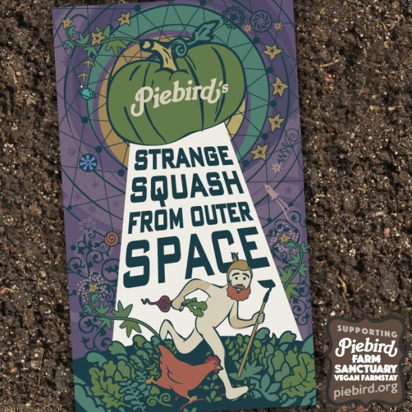 Strange Squash from Outer Space - seeds