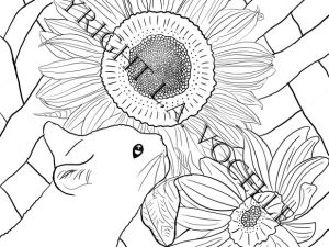 Copyrighted-Black Cat and Sunflowers from Cats and Flowers Coloring Book by L.A. Vocelle