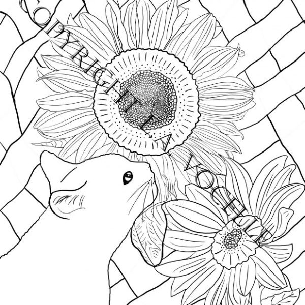 Cats And Flowers Coloring Book Page Cat And Sunflowers