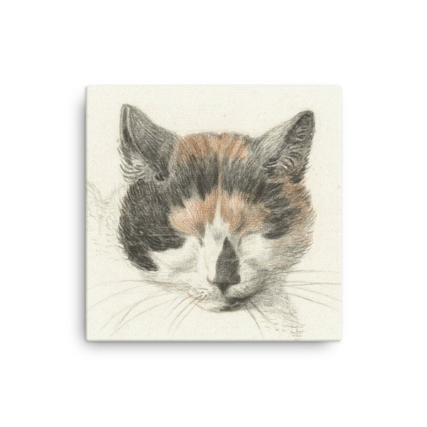 Jean Bernard: Study of a Calico Cat's Head, 18th C., Canvas Cat Art Print, 16×16