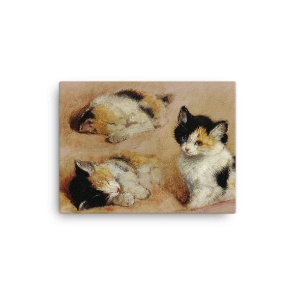Henriette Ronner-Knip: Study of a Sleeping Kitten, Canvas Cat Art Print, 12×16