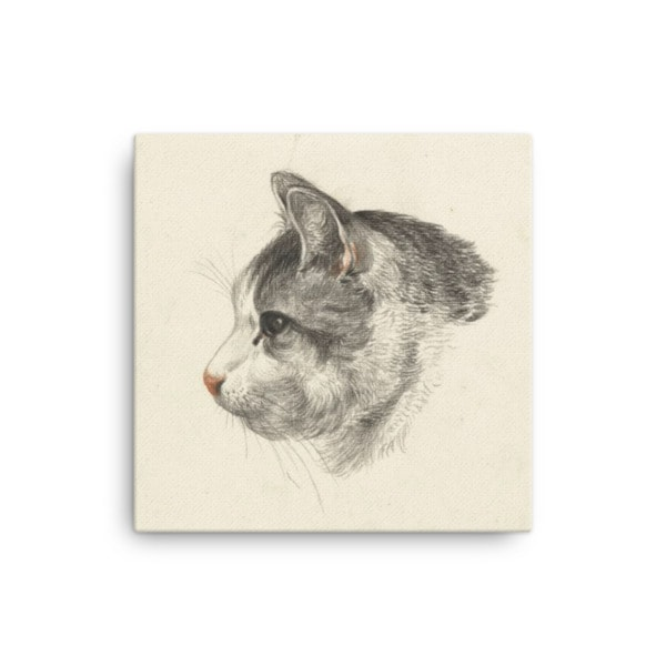 Jean Bernard: Study of a Cat's Head, Canvas Cat Art Print, 16×16