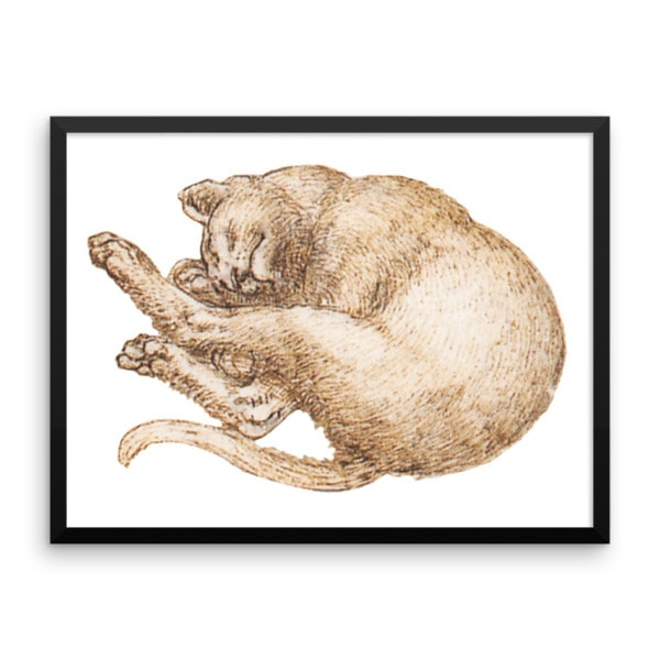 Leonardo da Vinci: Drawing of a Cat (2), 15th Century, Framed Cat Art Poster, 24×36