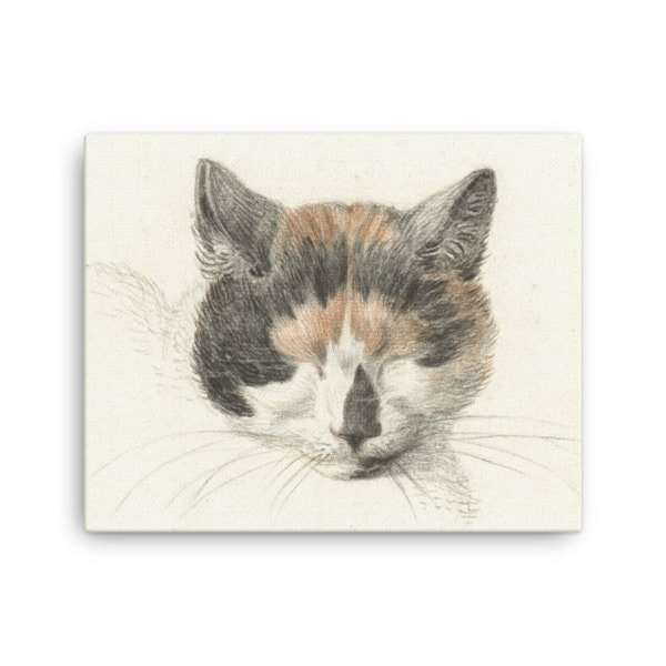 Jean Bernard: Study of a Calico Cat's Head, 18th C., Canvas Cat Art Print, 16×20