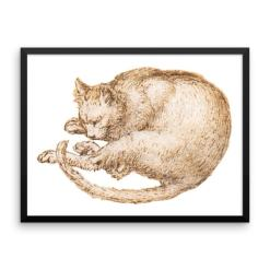 Leonardo da Vinci: Drawing of a Cat, 15th Century, Framed Cat Art Poster
