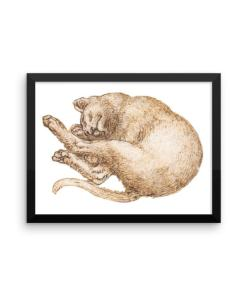 Leonardo da Vinci: Drawing of a Cat (2), 15th Century, Framed Cat Art Poster