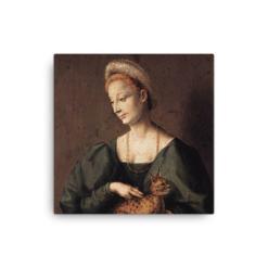 Francesco Bacchiacca: Woman with a Cat, 1540's canvas cat art print