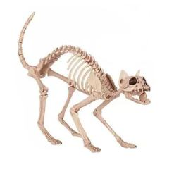 Halloween Cat Skeleton Decoration