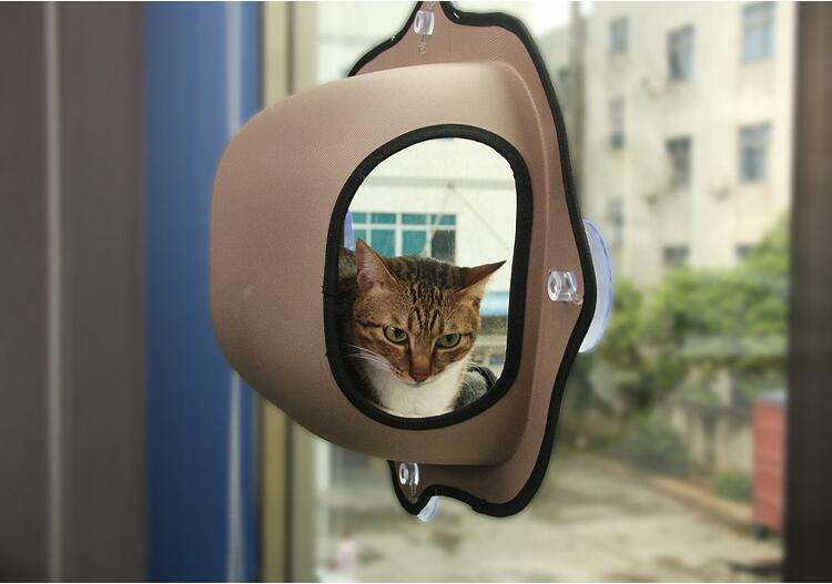 ... Cat Window Hammock ...