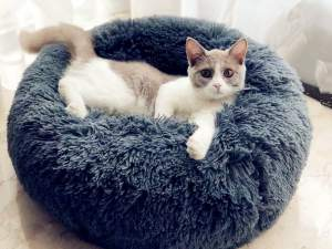 Round Plush Cat Bed at The Great Cat Store