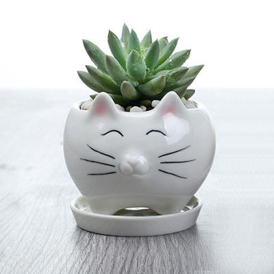 Cat Face Ceramic Pot