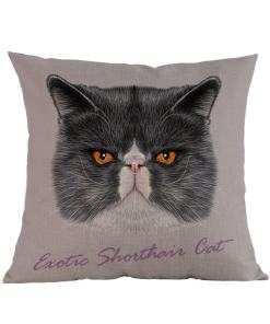 Exotic Cat Cushion