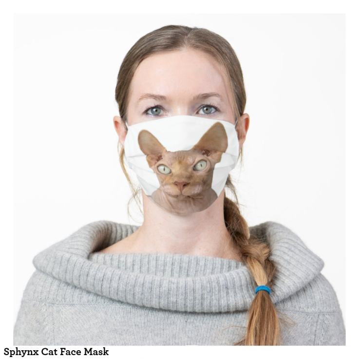 Sphinx Cat Face Mask as Worn
