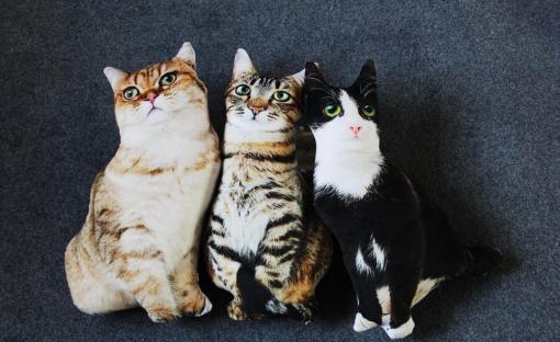 Cute Lifelike 3D Cat Soft Stuffed Pillows Cushions