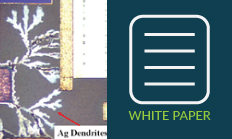 White Paper - Why Three Monolayers of Moisture are Important