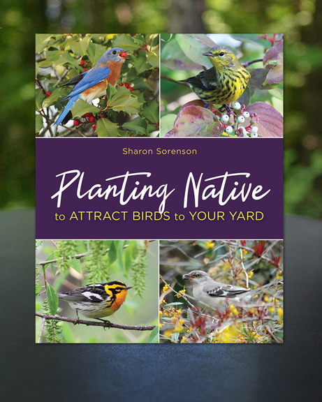 Planting Native