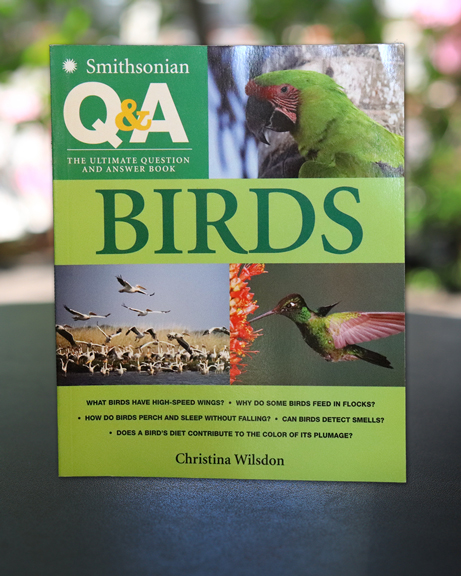 Smithsonian Q&A Birds