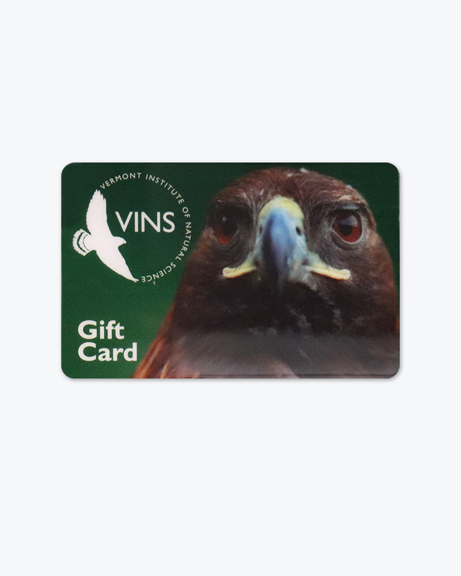 VINS Gift Card