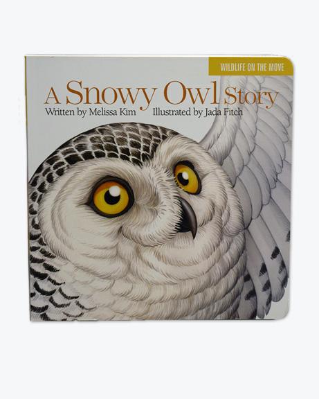 Snowy Owl Story