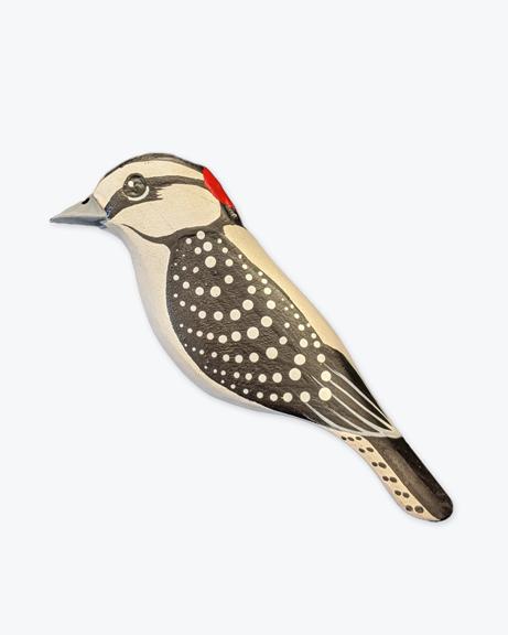 GS-Downy-Woodpecker