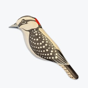 GS-Downy-Woodpecker