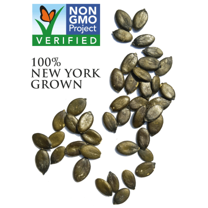 Raw pumpkin seeds austrian varietal