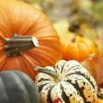 fall-pumpkins-5