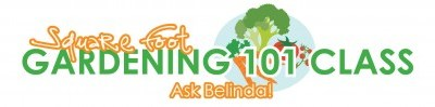 Ask Belinda: Harvesting Seeds