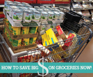SAVE BIG GROCERIES