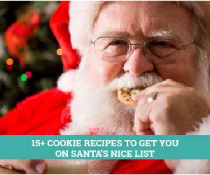 16 Mouth-Watering Cookie Recipes to get you on Santa's Nice List!