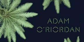 THE BURNING GROUND by Adam O'Riordan....https://storgy.com/2017/01/12/book-review-the-burning-ground-by-adam-oriordan/