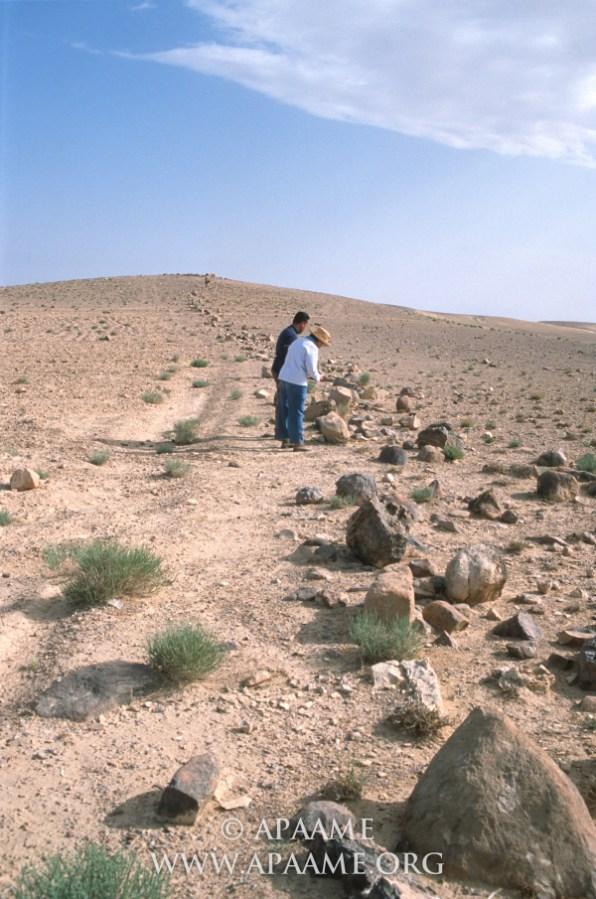 il muro di khatt Shebib