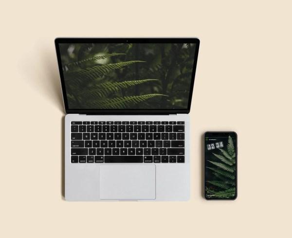mockup_comunicazione sito