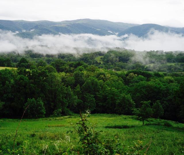 Nebel über dem Wald am Rande der Pyrenäen, Schokoladenherstellung