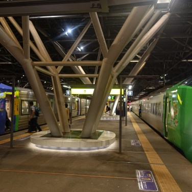 Trains either side of a platform