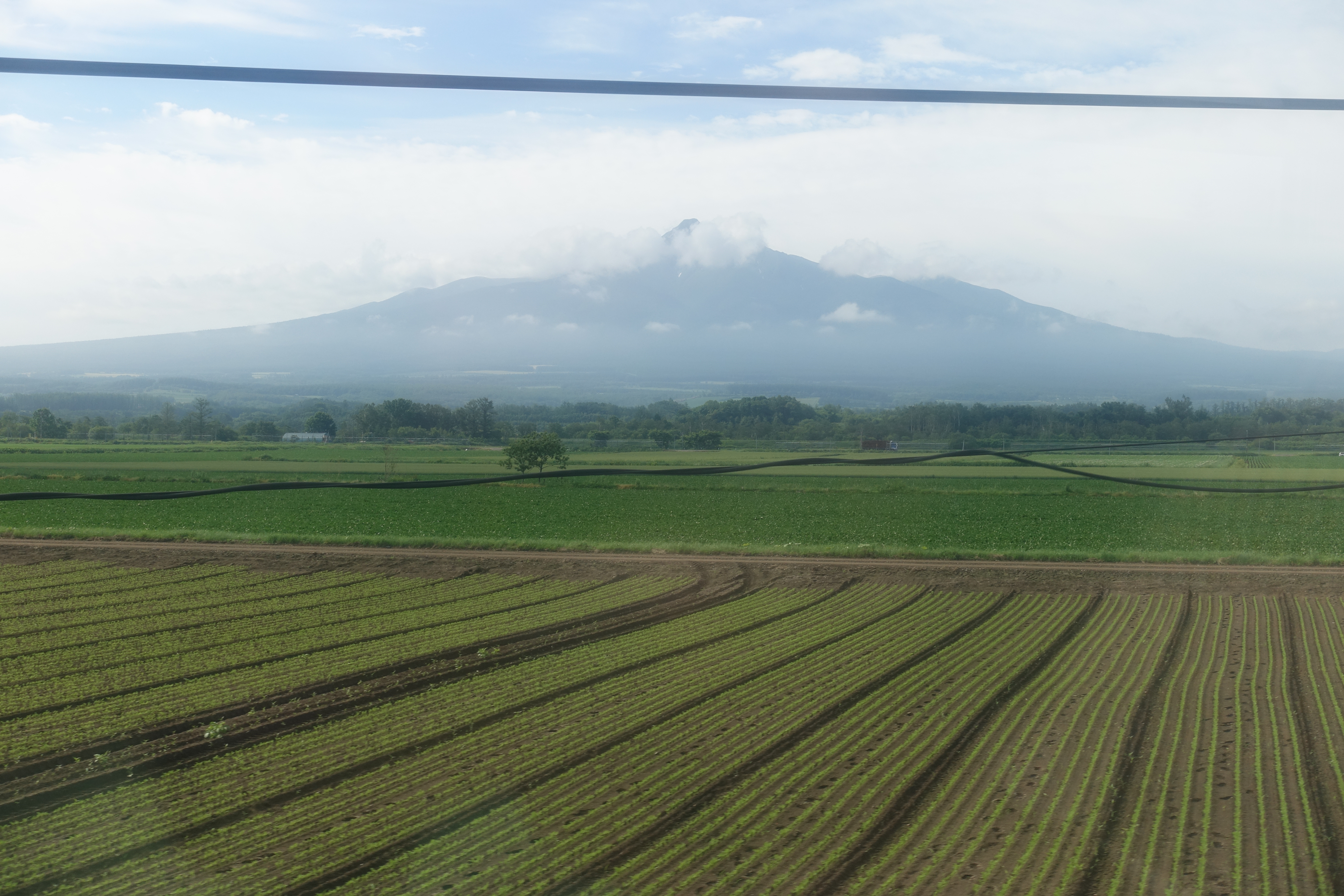 Mountain behind farmland