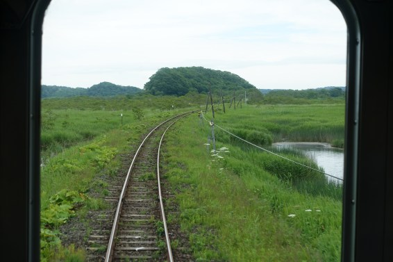 Train tracks through marshland