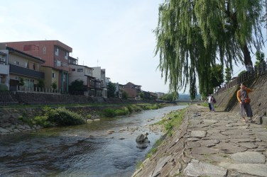 Miyagawa river with willow tree