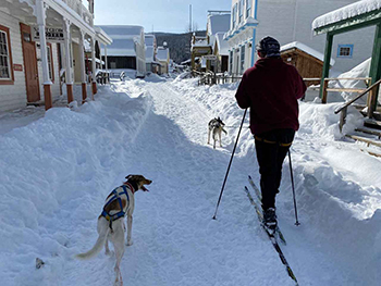 man and dog in winter