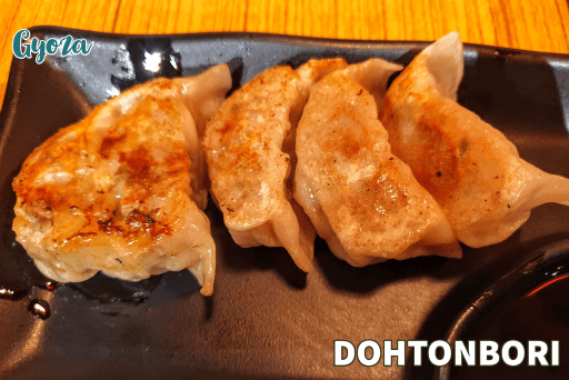 Gyoza by Dohtonbori