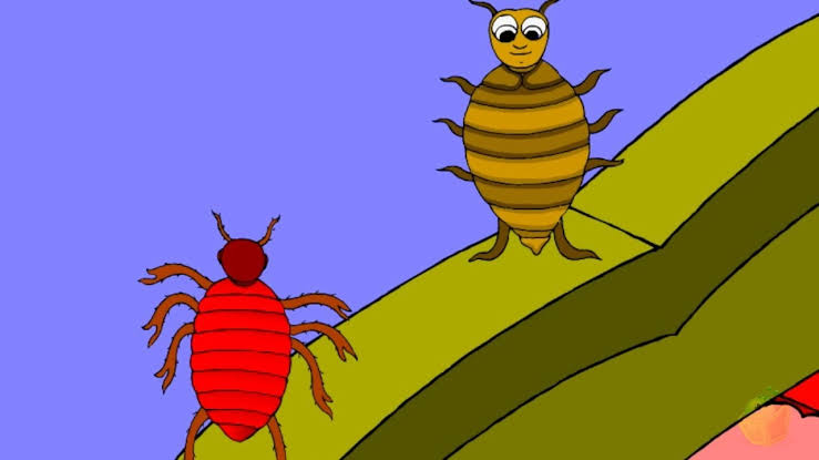 The Louse and The Bedbug Panchatantra Story in English