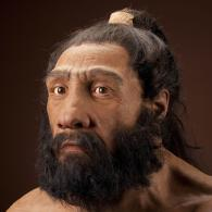 Available from: http://humanorigins.si.edu/evidence/human-fossils/species/homo-neanderthalensis