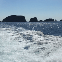 A Boat Trip to the Shiant Isles - On Video!